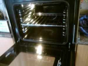 Бизнес идея - чистка кухонных плит и микроволновых печей