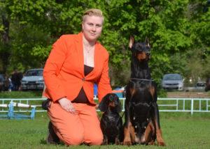 Работа с животными: 7 способов превратить увлечение в заработок