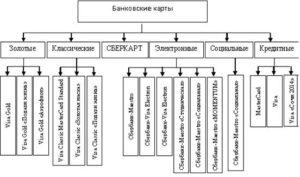 Виды банковских карт - характеристики и особенности