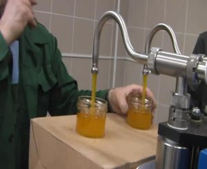 Производство фасованного мёда как бизнес