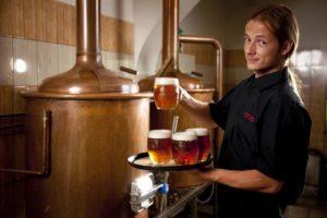 Как открыть мини-пивоварню: этапы организации бизнеса