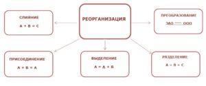 Реорганизация путем разделения пошаговая инструкция
