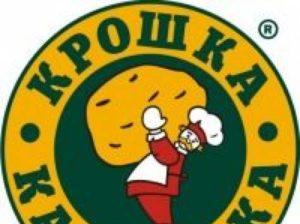 История создания и стоимость популярной российской франшизы Крошка Картошка