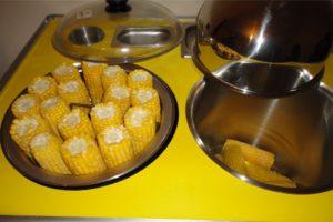 Изготовление и продажа вареной кукурузы как бизнес