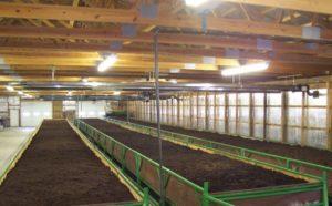 Как организовать производство биогумуса