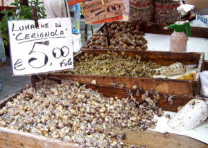 Выращивание улиток для ресторанов как бизнес