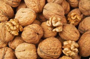 Грецкий орех как бизнес идея